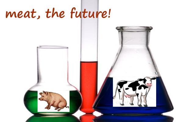 in-vitro meat