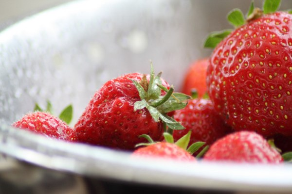 Berries Slow Age-Related Memory Loss