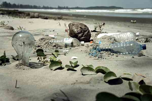 Plastic in 'Great Pacific Garbage Patch' Increases 100-Fold