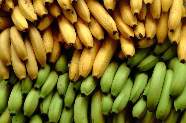 The Human and Environmental Impact of Bananas