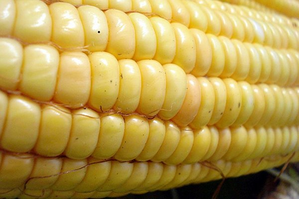 High Fructose Corn Syrup Tied to Global Diabetes Increase?