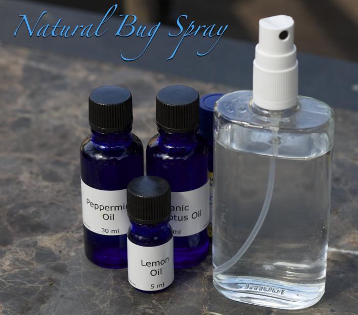 DIY Natural Bug Spray