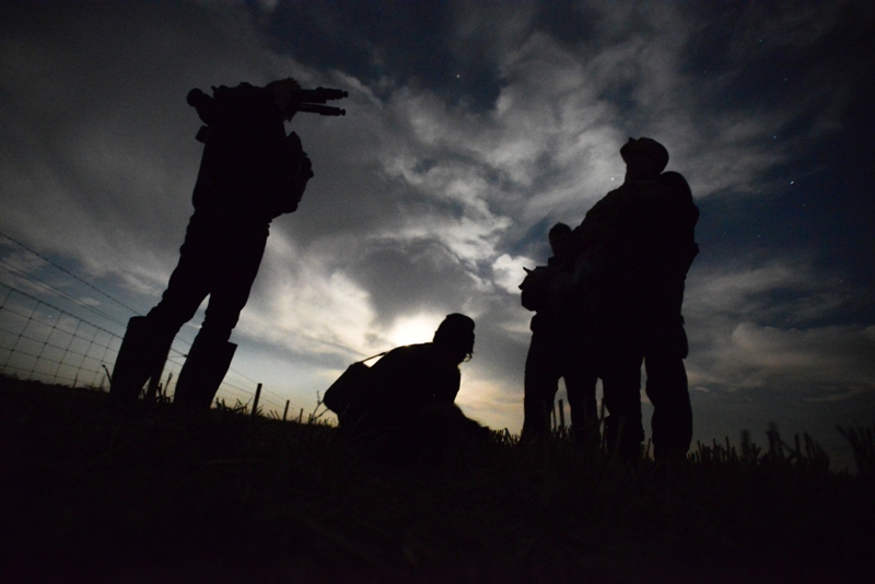 Open Rescuers with Piglets at 3 A.M., Australia, 2013