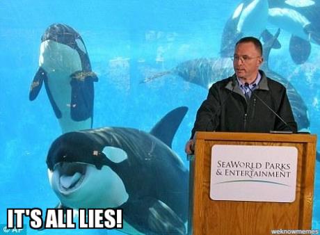 OrcaShoutingMeme