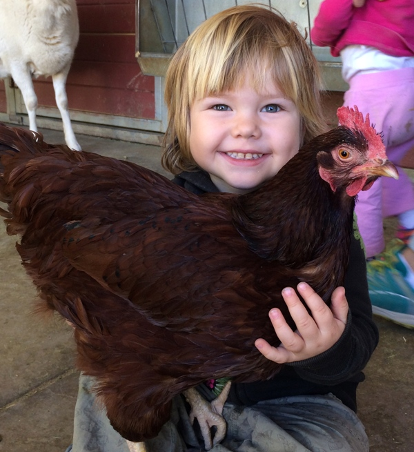This Amazing California Farm Sanctuary Is Saving Animals and At-Risk Youth