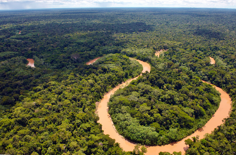 Would You Skip Your Morning Coffee to Save 5.9 Million Acres of the Amazon?
