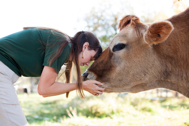 Inside Scoop: A Day in the Life Working at Animal Place Farm Sanctuary