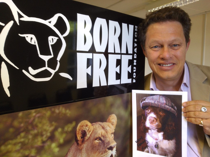 8 Anti-Captivity Heroes We Can All Love