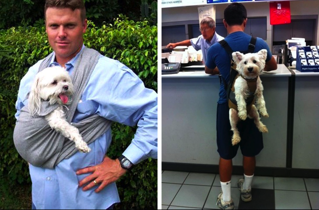 10 Humans Who Treat Their Dogs Like Babies