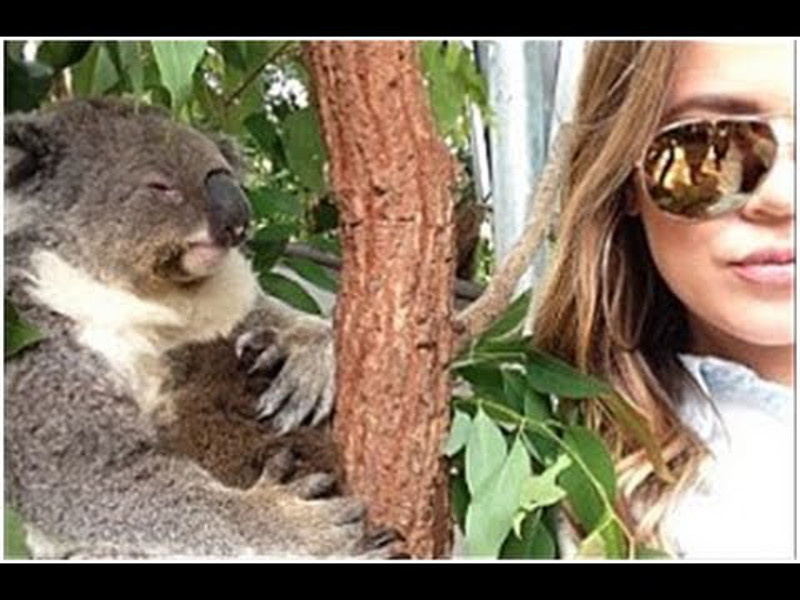 Celebrity Selfies With Animals: Adorable or Exploitation?