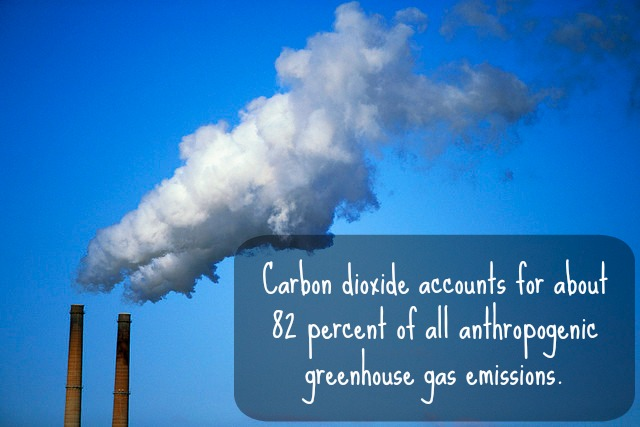 Methane vs. Carbon Dioxide: A Greenhouse Gas Showdown