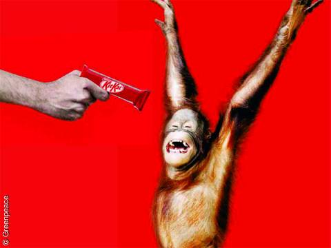 10 Advertisements That Make You Re-Think How Your Consumption Habits Impact Animals