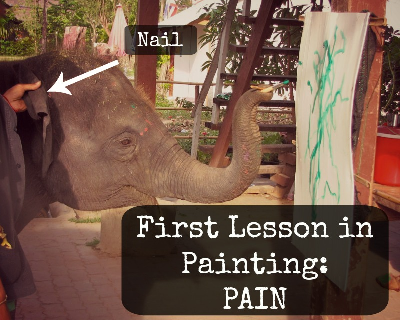 You Can't Spell Elephant Painting Without Pain!