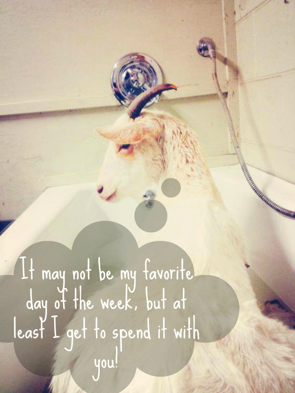 kindred-spirits-take-baths