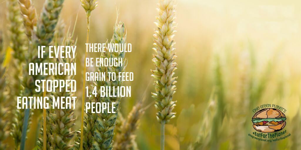 1.4billion