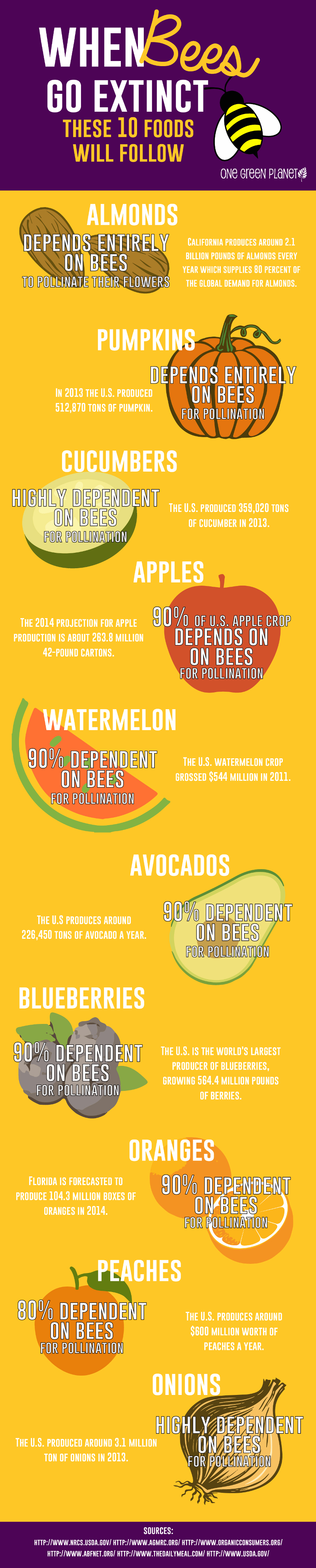 When Bees Go Extinct, These 10 Foods Will Follow