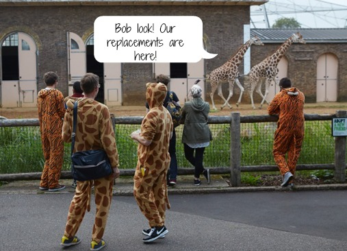 Zoo animals not pleased