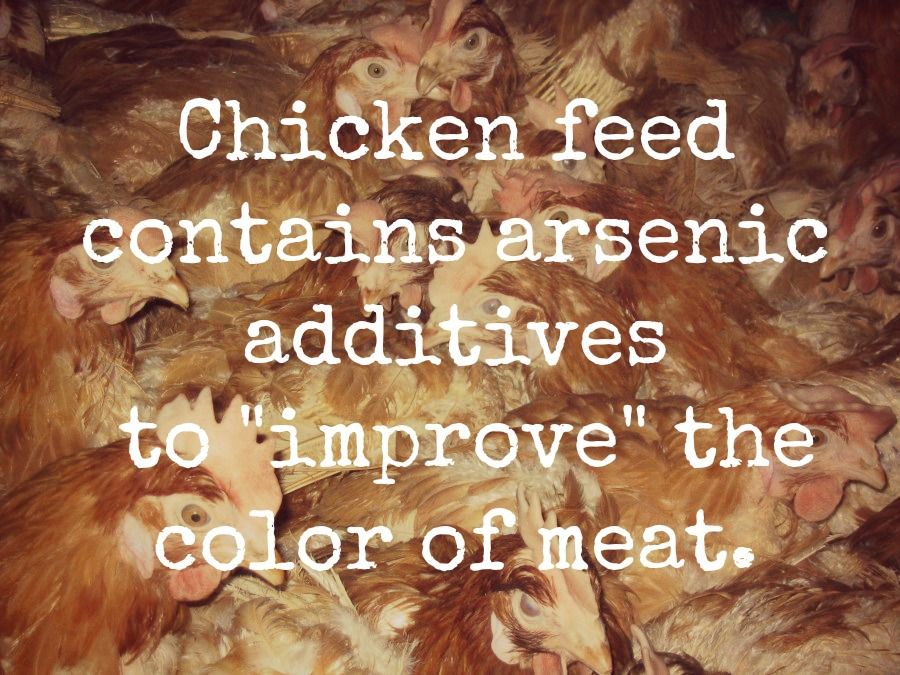 The Scary Reasons Why You Should Keep Protein From Chicken and Eggs off Your Plate