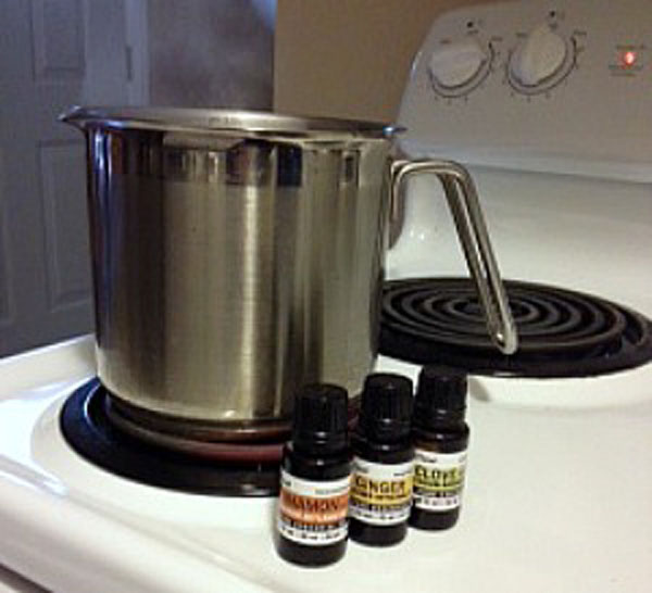 Cool Ways to Make Your House Smell Like Fall (No Chemicals Required!)