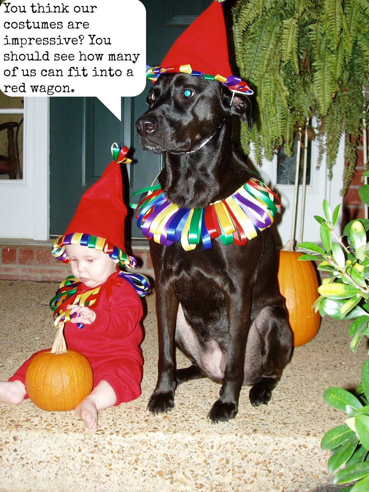 Double Your Treats (And Maybe The Tricks) by Coordinating With Your Pet For Halloween.