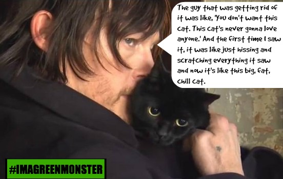 10 Reasons Why Norman Reedus is a Walking Badass For Animals!