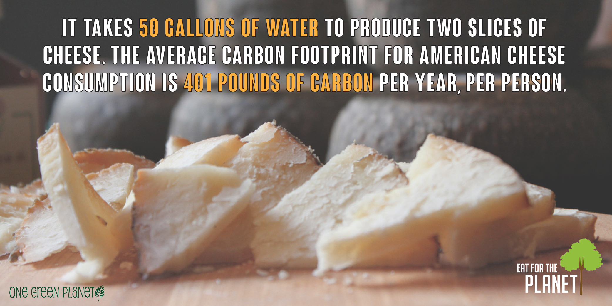 Are You Taking a Bite Out of the Environment? Top 10 Most Environmentally Destructive Foods