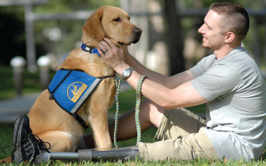15 Photos of People with Therapy Dogs That are Beautiful and Inspiring