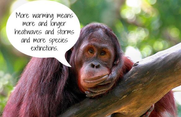 Sad Animals Climate Change