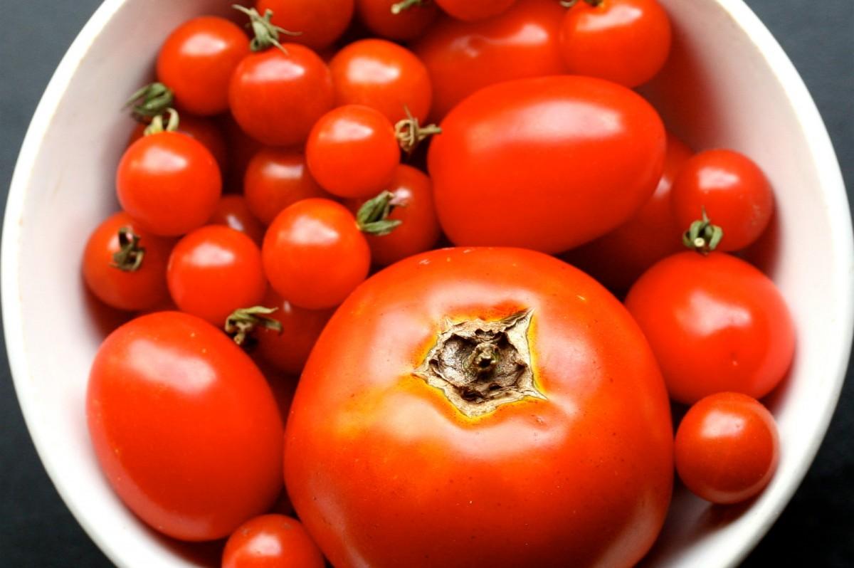tomatoes-1200x798