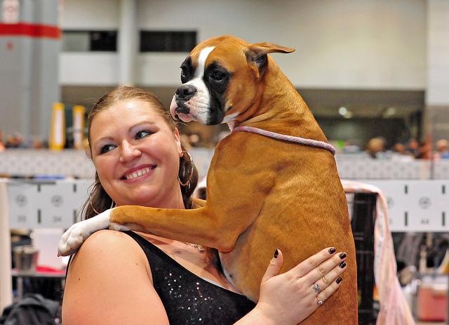 Puppy Love Hugs