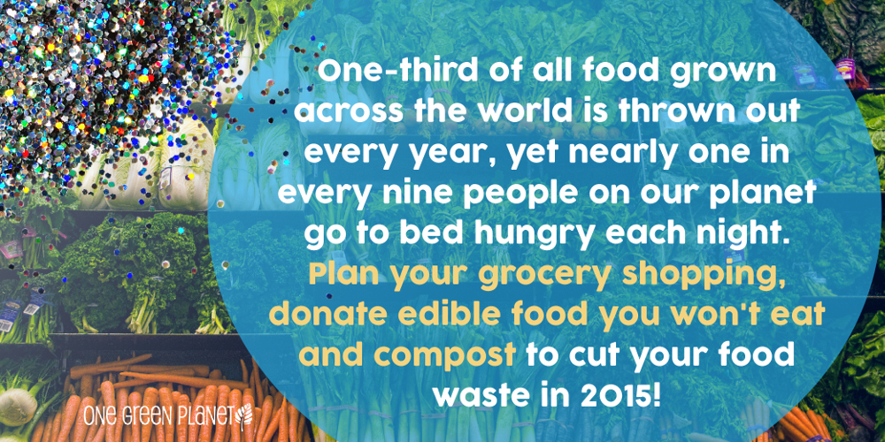 Cheers to 2015! Our New Year's Resolutions for the Planet