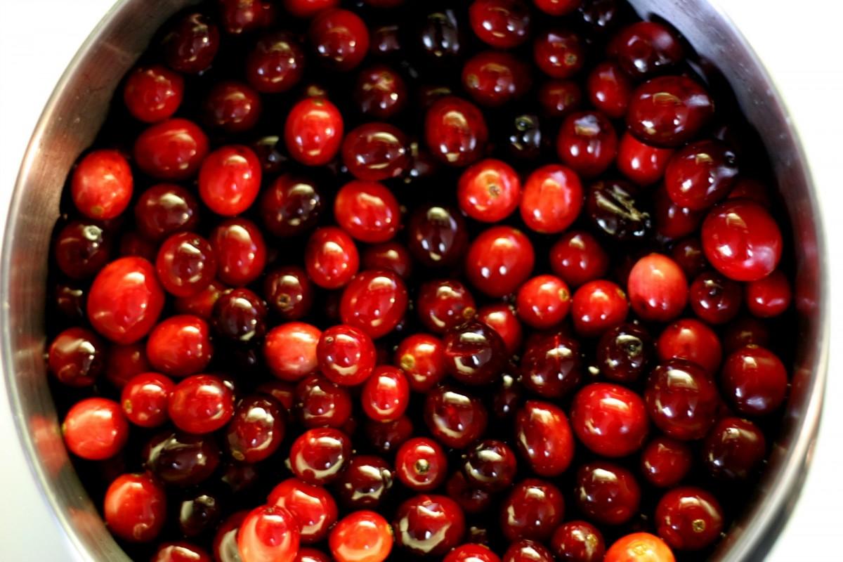 cranberries-1200x800