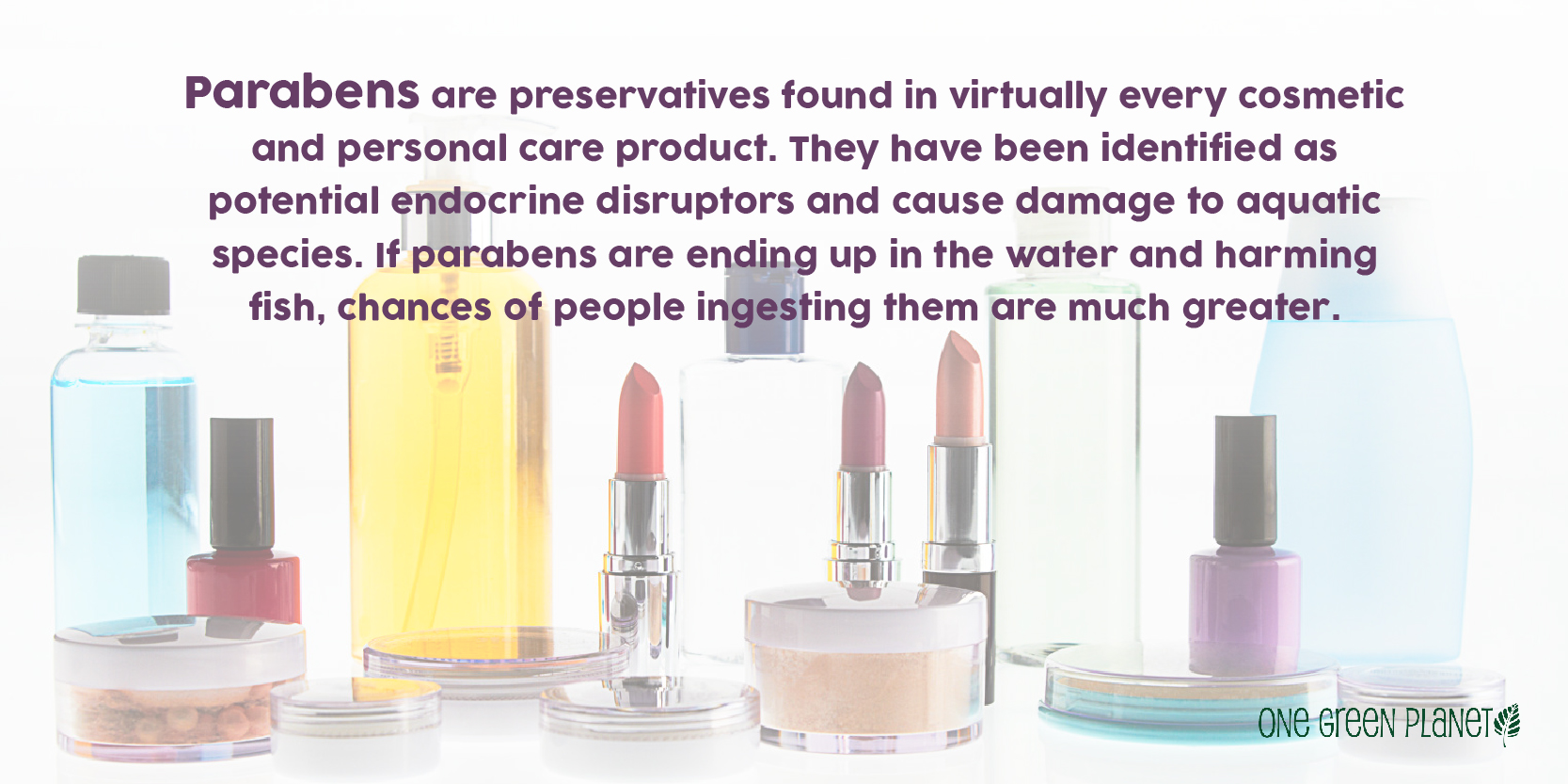 The Disturbing Environmental and Health Impact of Pouring Personal Care Products Down the Drain
