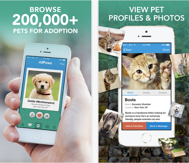 6 Apps That Help Adoptable Animals Find Forever Homes6 Apps That Help Adoptable Animals Find Forever Homes