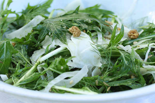 Mizuna, Fennel, and Mulberry Salad