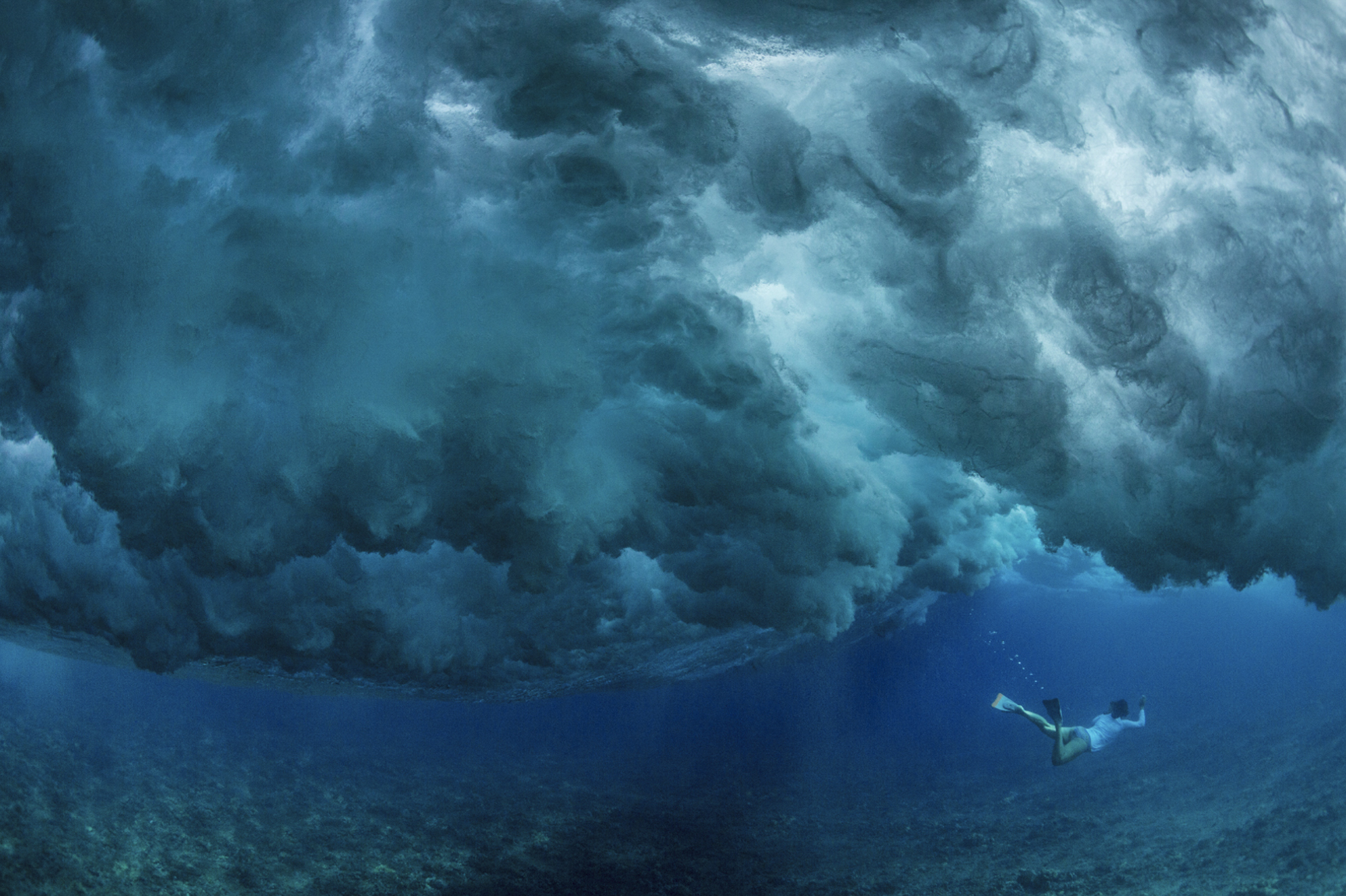 This Incredible Organization Uses Photos to Tell Stories of the Ocean and Inspire Change