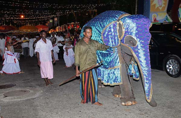 Heart of Ganesh is Encouraging Compassion to End Human-Elephant Conflict