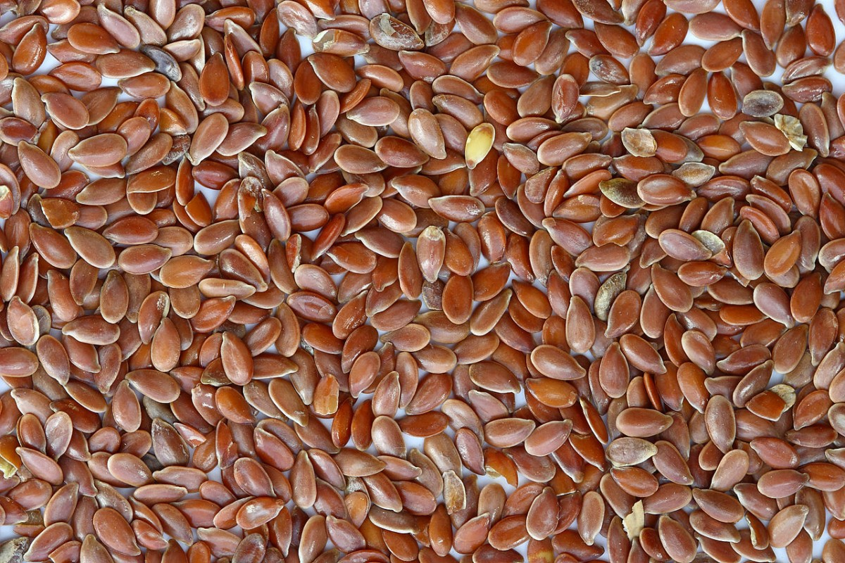 1280px-Brown_Flax_Seeds-1200x800
