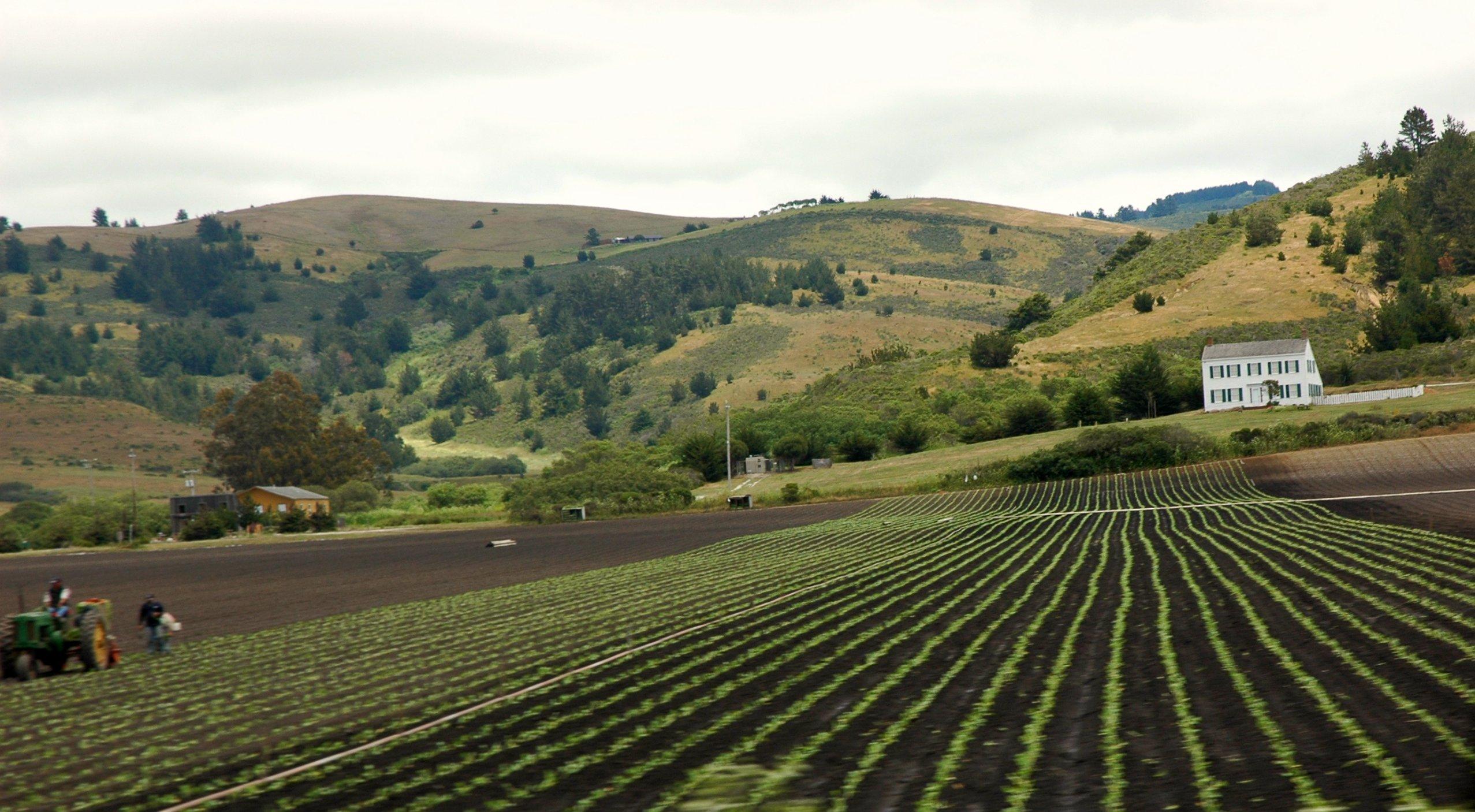 Long_fields_with_farm_in_California