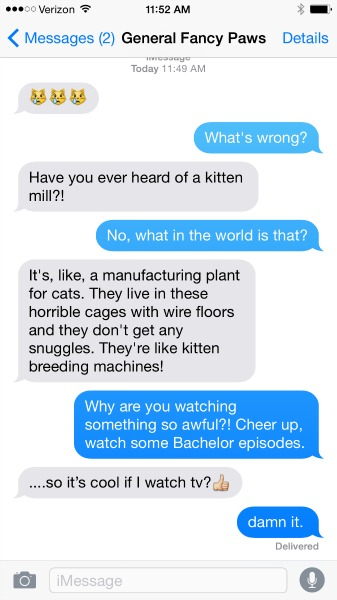 Texts From Your Cat Would Probably Look Like These if They Knew About Overpopulation