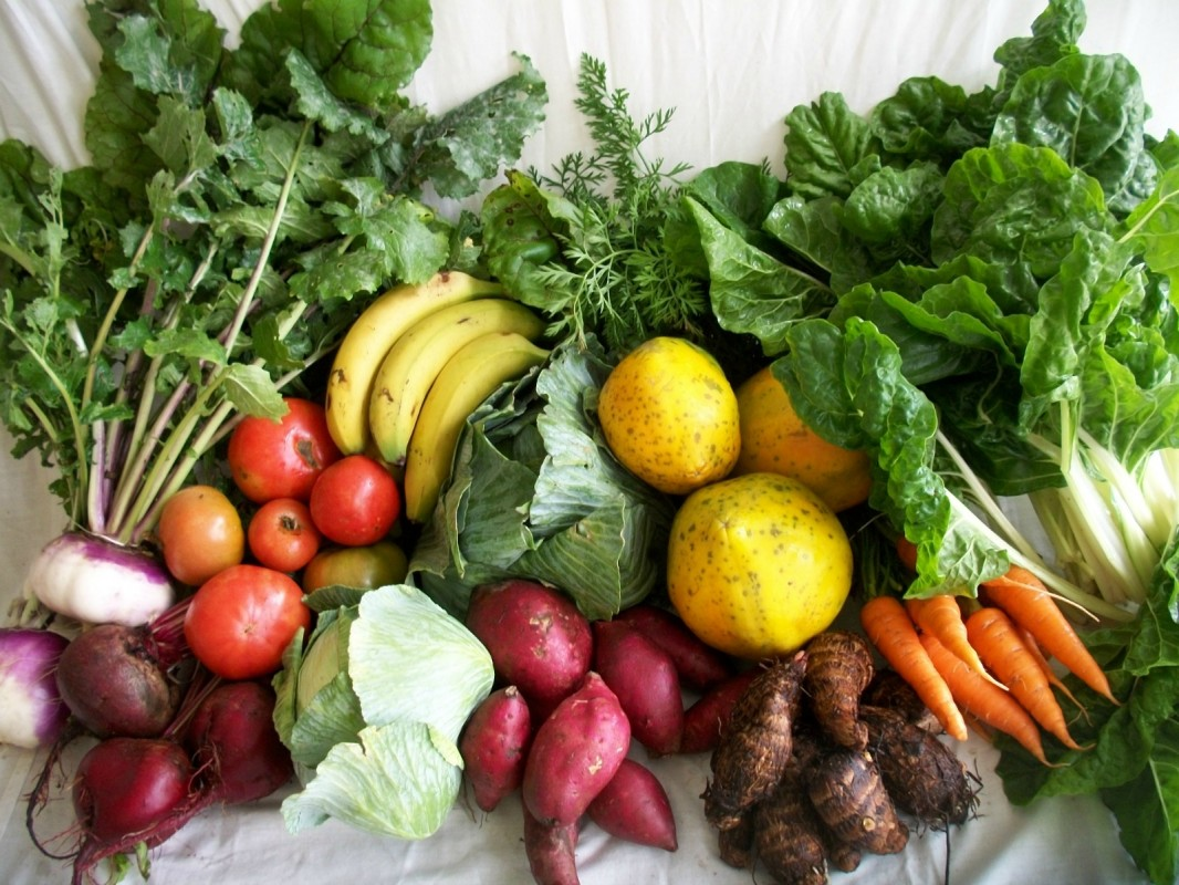 Fruits-and-Veggies-for-Cancer-1066x800