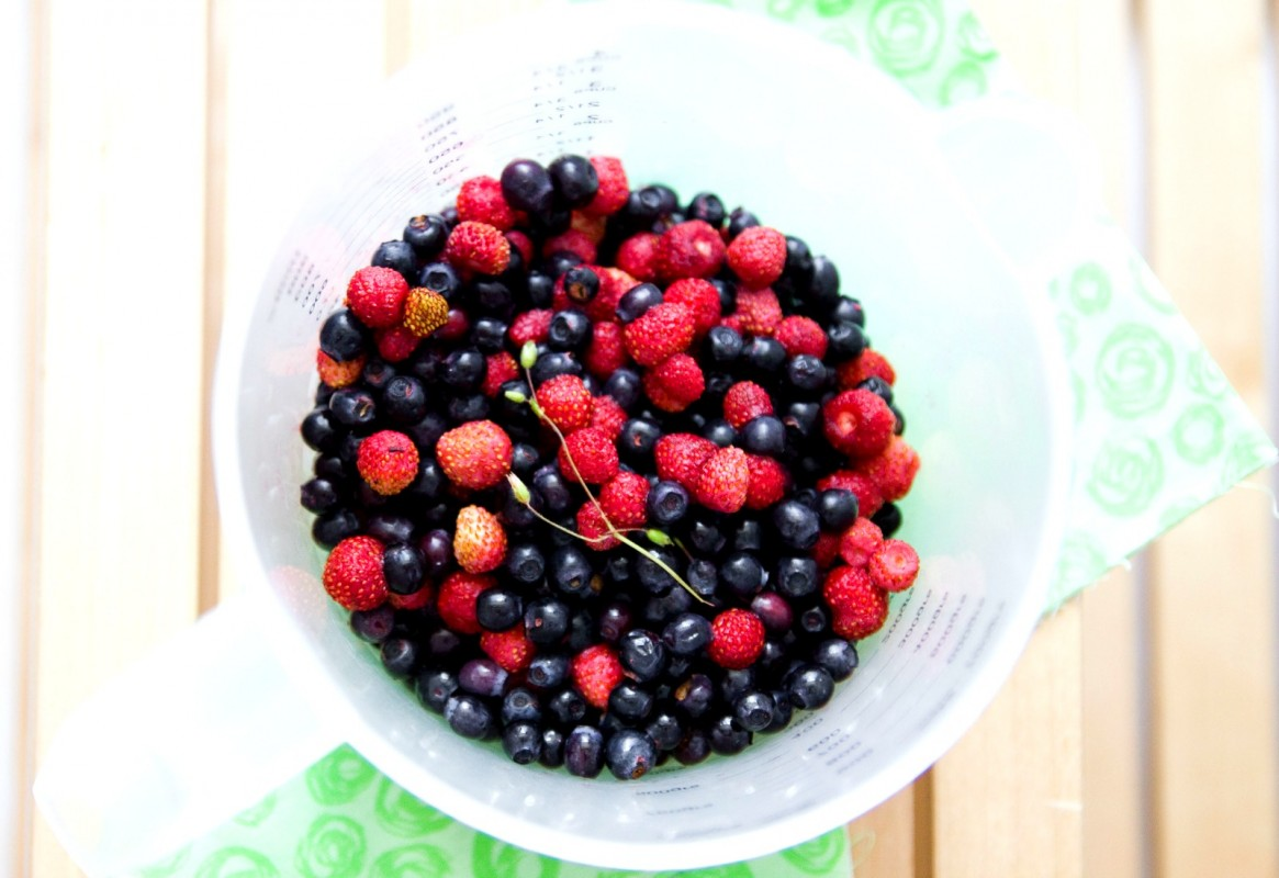 berries1-1165x800