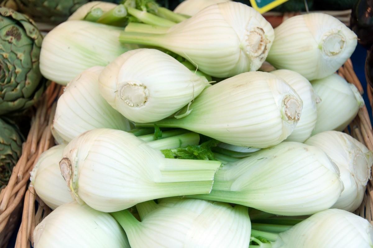 fennel-bulbs-1200x797
