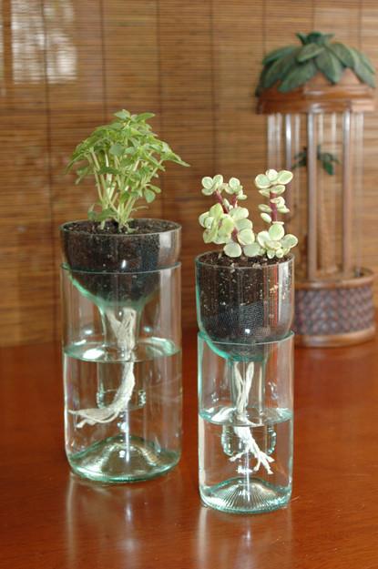 winebottleplanter