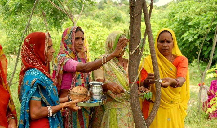 This Amazing Village in India Plants 111 Trees Everytime a Little Girl is Born
