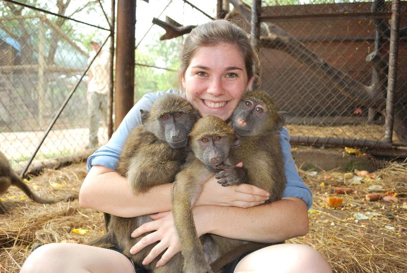volunteer opportunities wildlife conservation abroad
