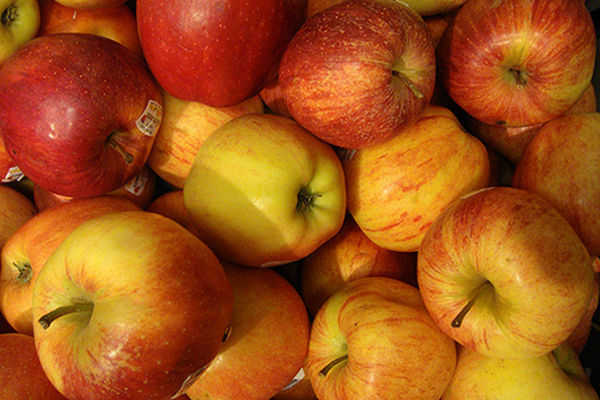 Apples-Health-Benefits-Fall