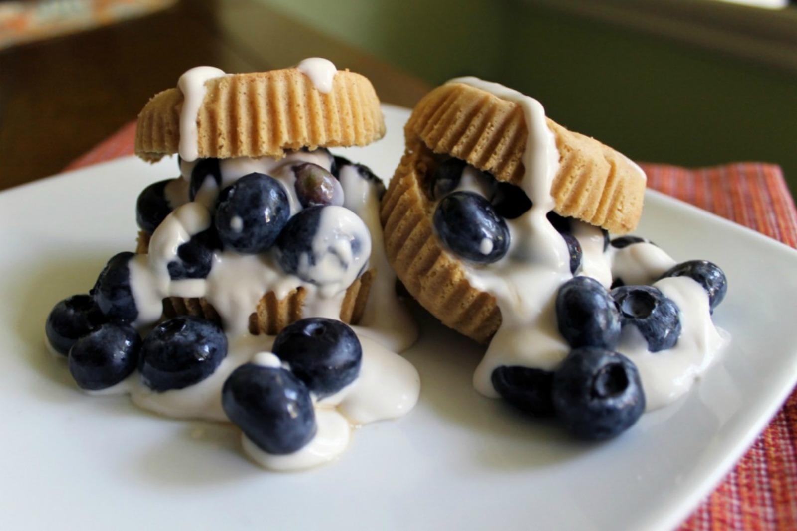 Vegan Blueberry Recipes