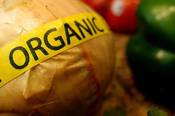 Organic-Food-Jerk-vegan-snob