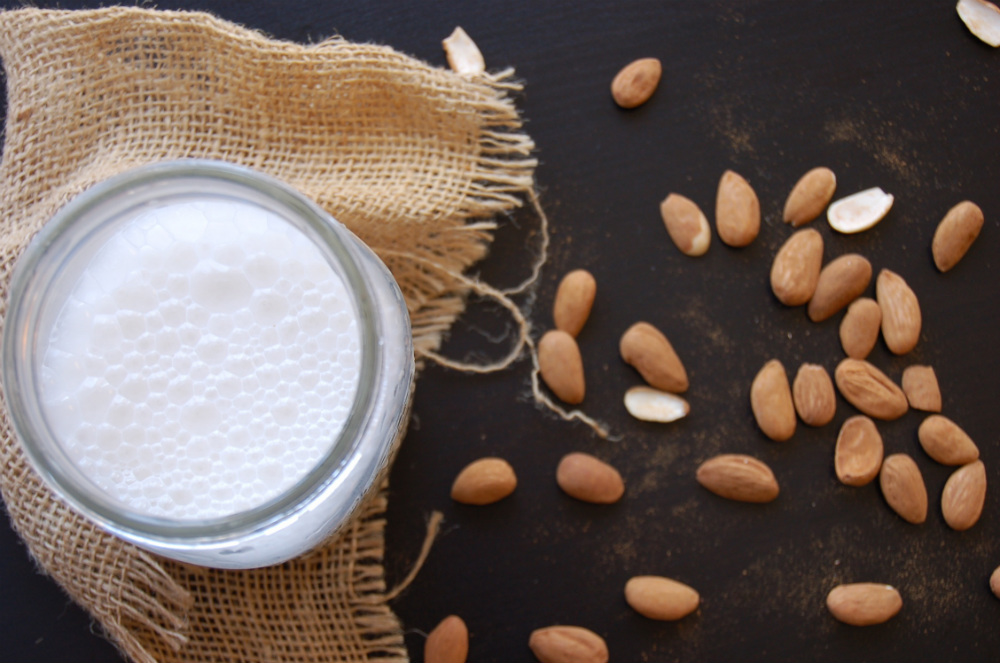 how-to-milk-an-almond-and-make-milk